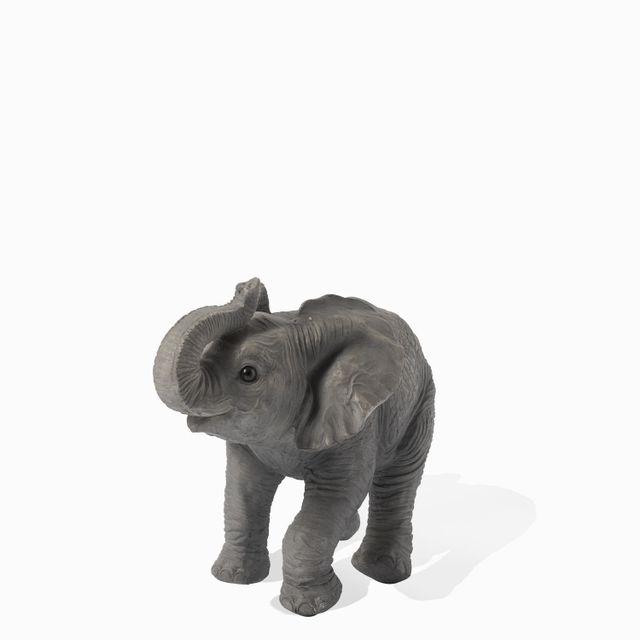 Mini elefante mirada arriba