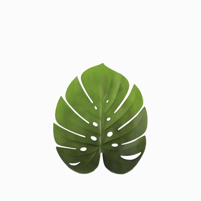 Individual-hoja-monstera