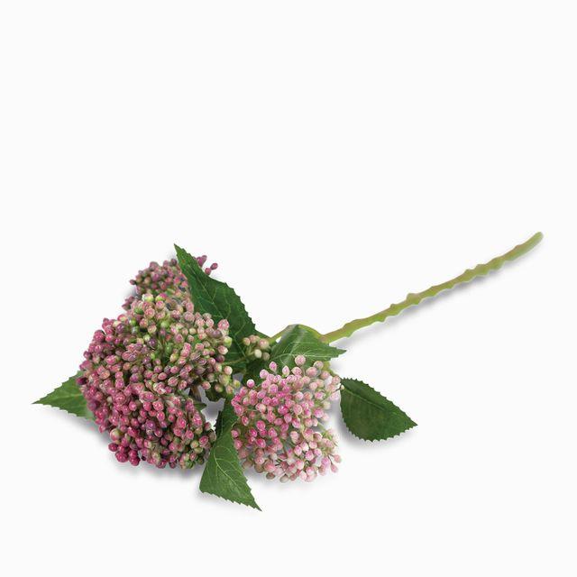 Flor de tallo rosada