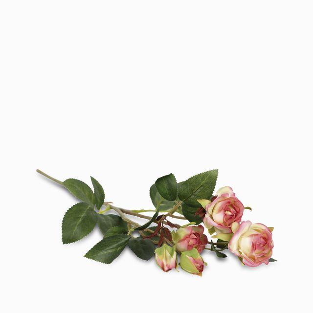 Mini rosas x 5