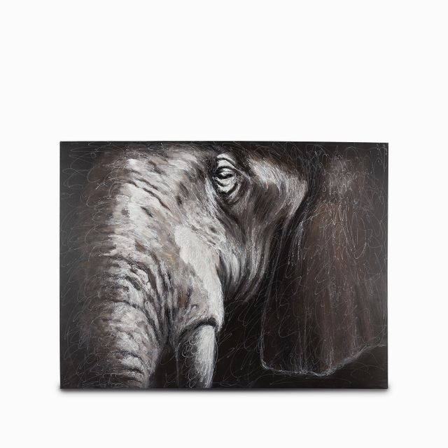Cuadro cabeza elefante 120x90x3.5