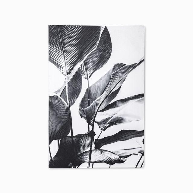 Cuadro-flor-de-cala-gris-60x40