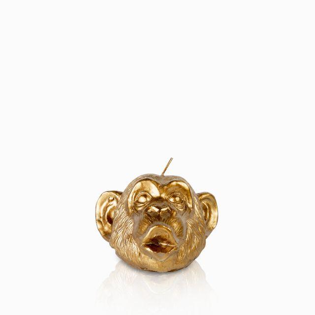Vela-mono-dorado
