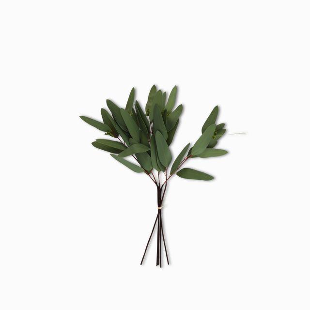 Racimo-eucalipto-largo-40cm