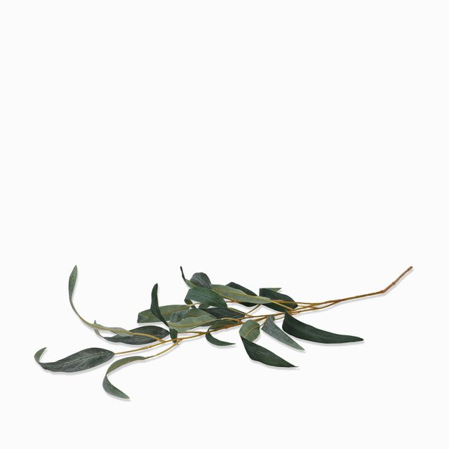 Racimo-eucalipto-68cm