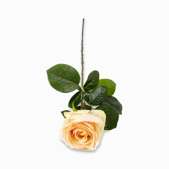 Rosa-color-durazno-68cm