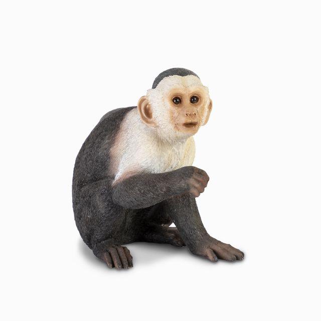 Mono-capuccino