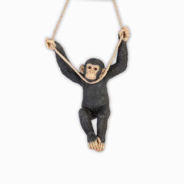 Chimpance-culumpio
