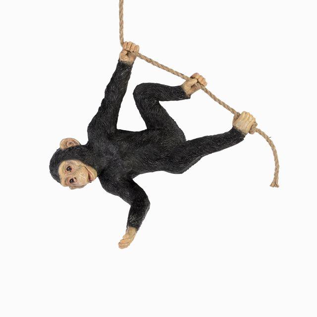 Chimpance-malabarista