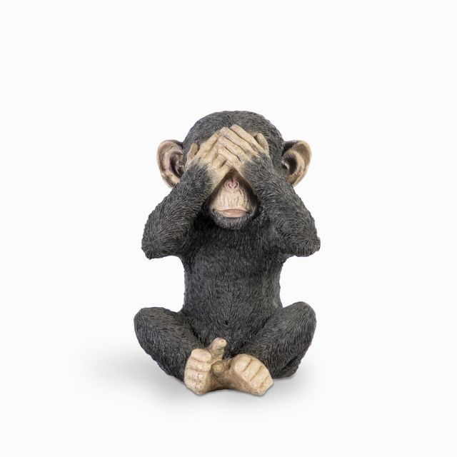 Chimpance-ojos