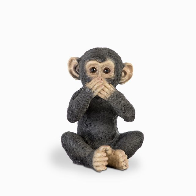 Chimpance-nariz