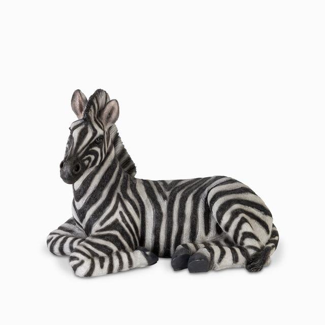 Cebra-sentada