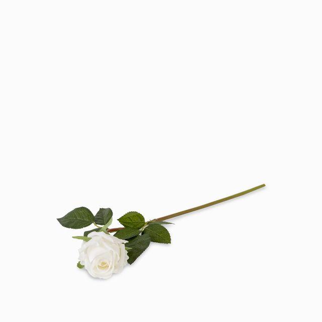 Rosa-blanca-43cm