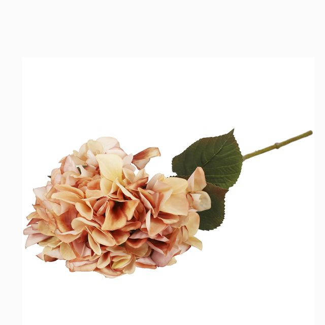 Hortensia-durazno-67cm