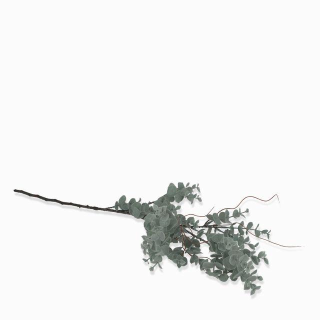 Rama-eucalipto-redondo-86cm